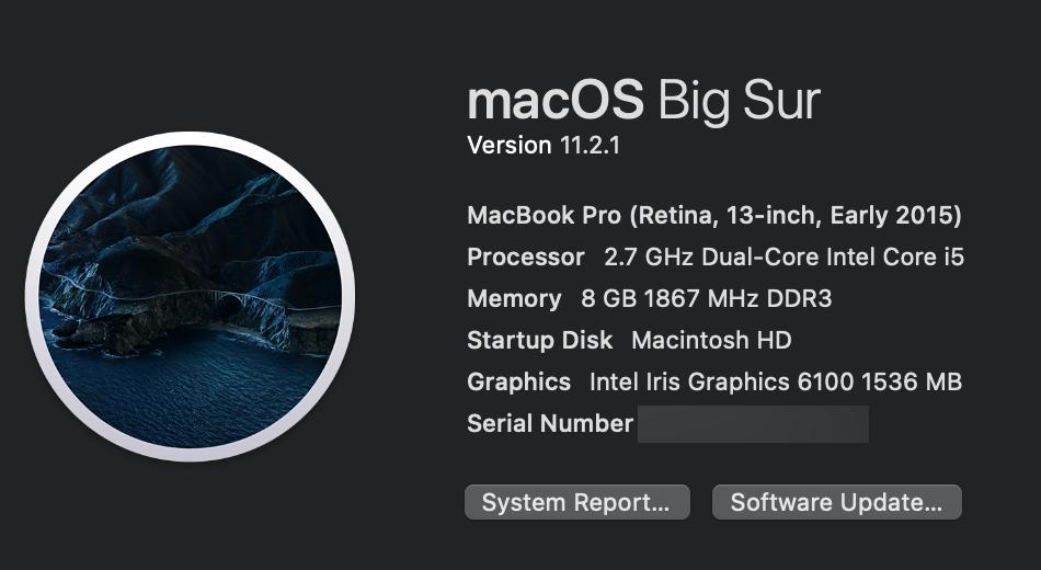Macbook Pro Retina, 13-inch, Early 2015, MacOS Big Sur 11.2.1 Intel Iris Graphics 6100